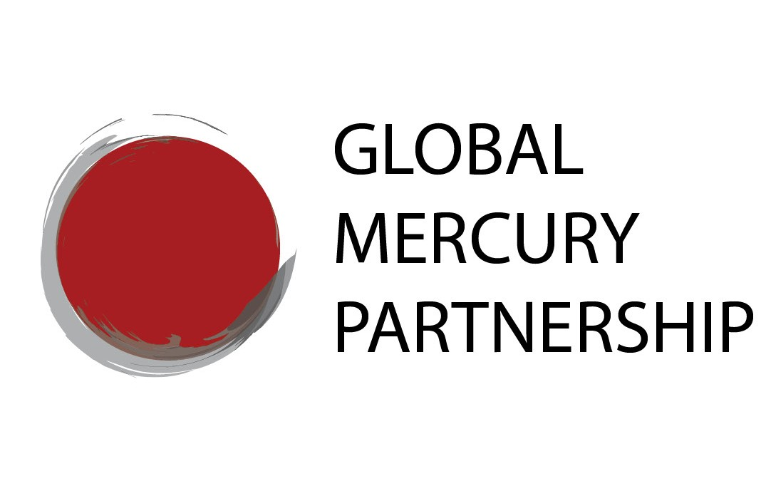 UNEP Global Mercury Partnership Advisory Group meeting 11