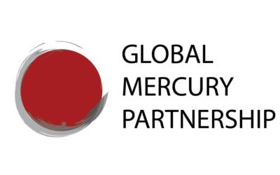 UNEP Global Mercury Partnership Advisory Group meeting 11